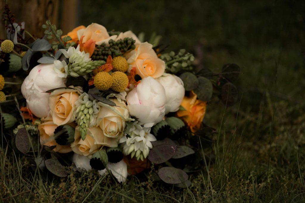 Orange Blossom Designs by Susan Miller Photography