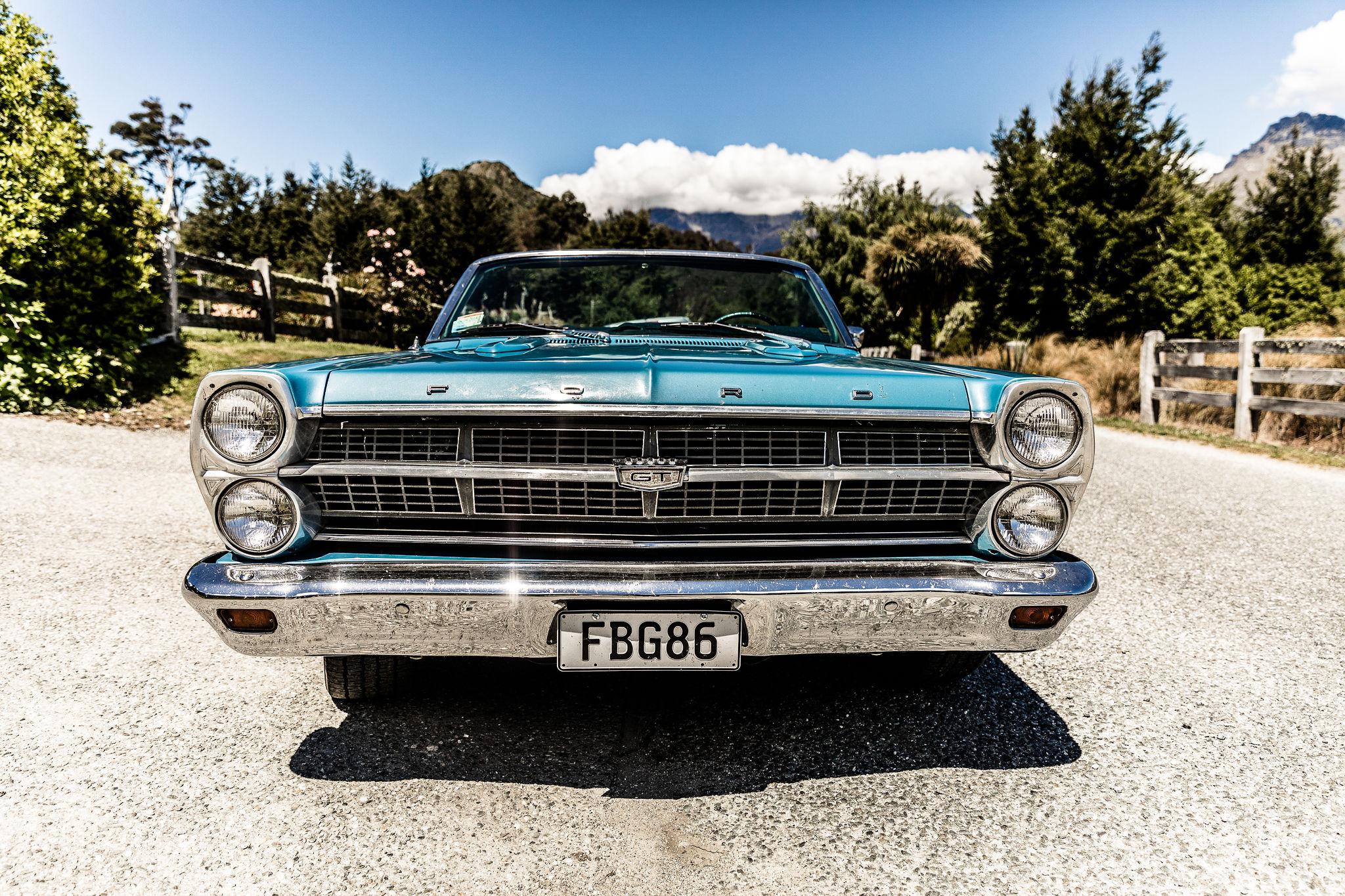 46 Tui Drive - Susan Miller Photography