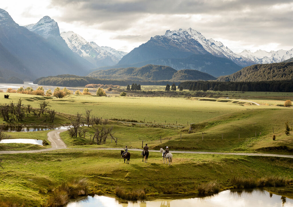 High Country Horses - Queenstown Business Photography - Susan Miller Photography