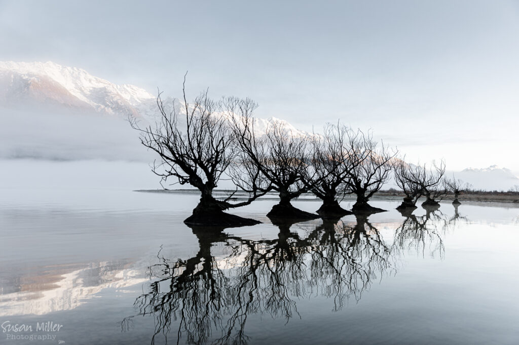 Glenorchy - Head of the Lake - Susan Miller Photography
