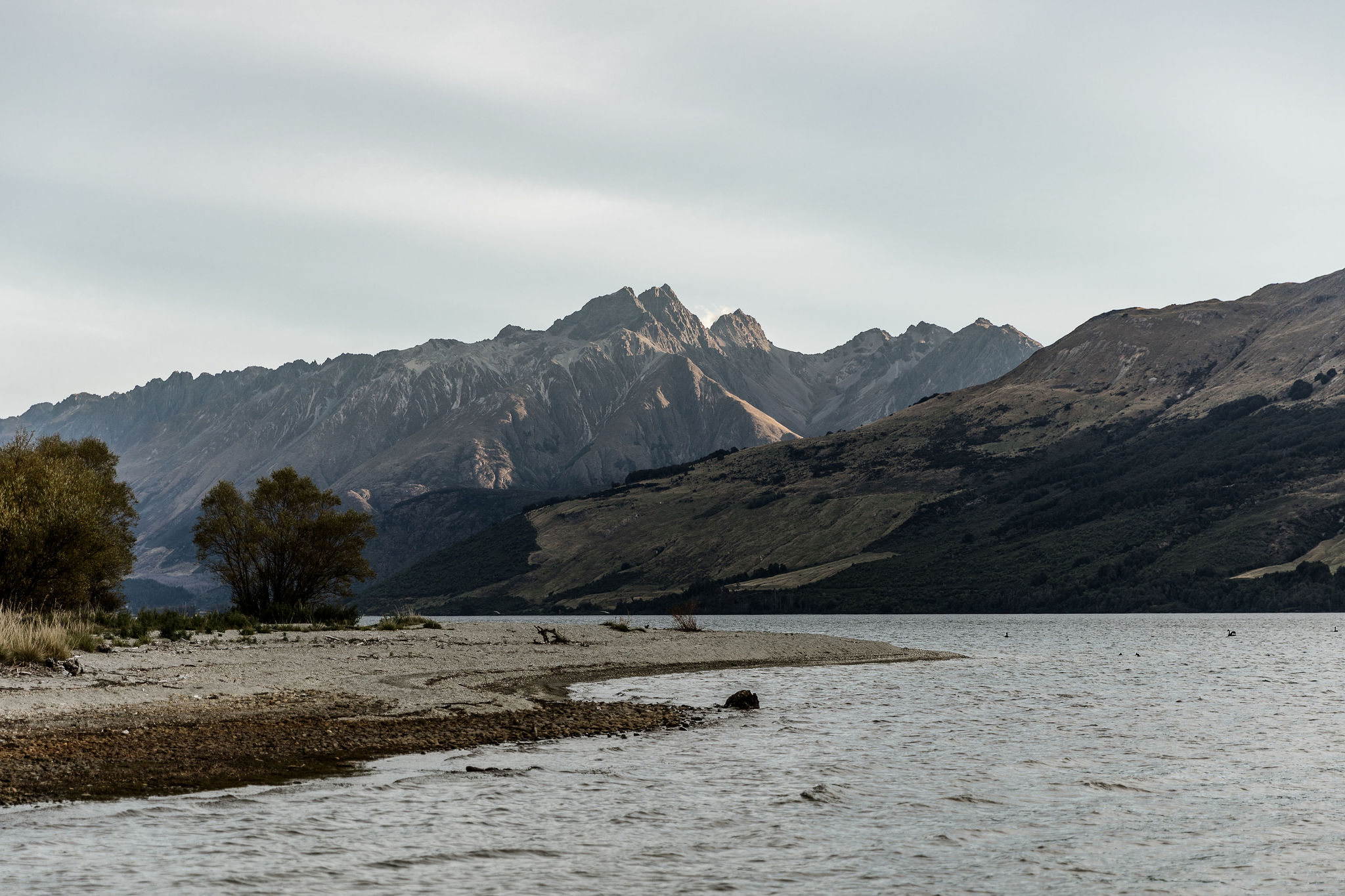 Head of the Lake Glenorchy - Susan Miller Photography