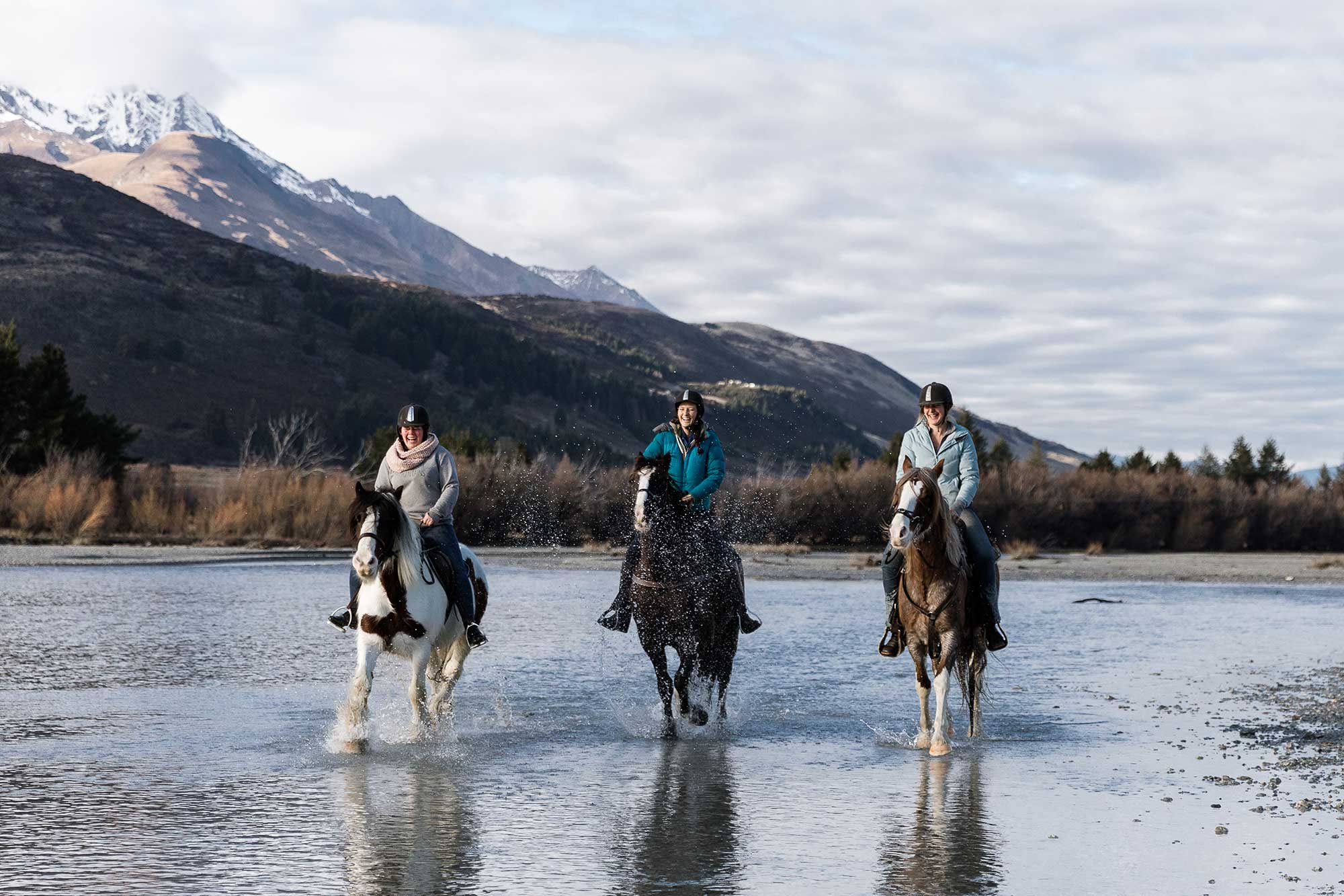 High Country Horses - Susan Miller Photography